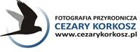 Fotografia Przyrodnicza Cezary Krokosz