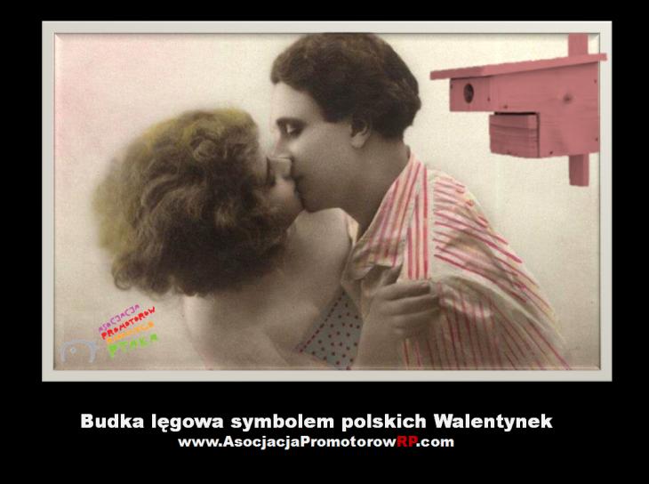 walentynki2014